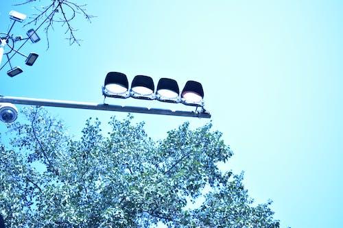 Free stock photo of traffic light