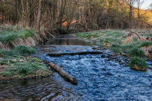 Foto stok gratis air, aliran, aliran air