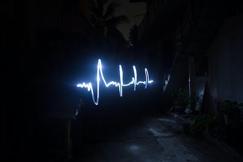 Ilmainen kuvapankkikuva tunnisteilla alhainen suljin, buddies, led-valo, nikon