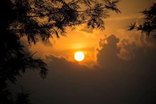Ilmainen kuvapankkikuva tunnisteilla ilta, ilta-aurinko, iltataivas, Kauneus