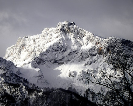 Mountain Cliff Covered With Snow Near Trees Landscape Photo