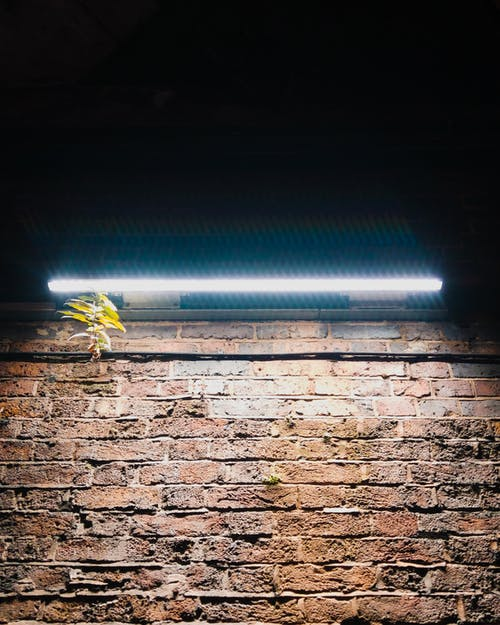 Free stock photo of brick wall, neon light, night, stonewall