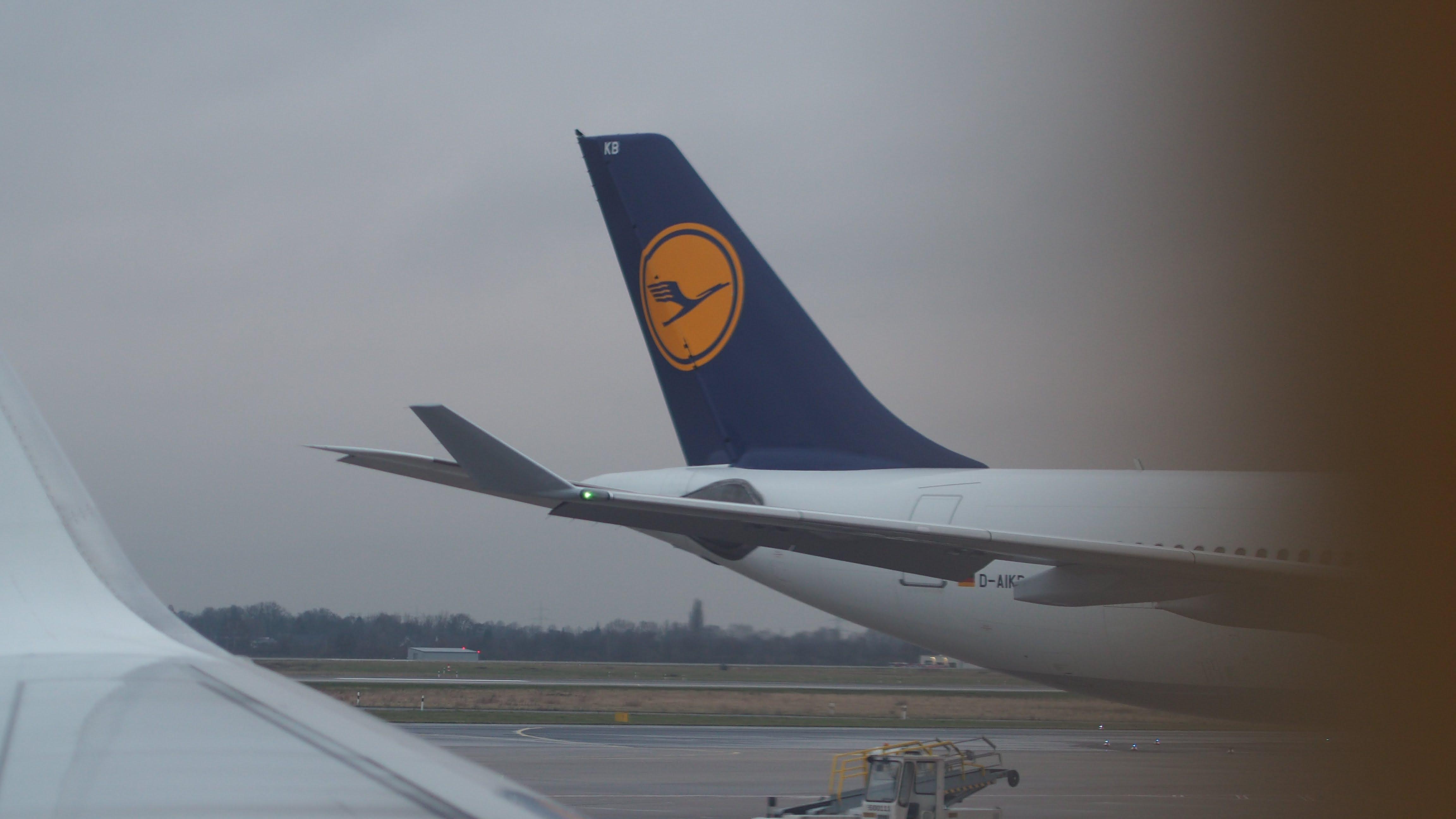 Free stock photo of aeroplane, lufthansa