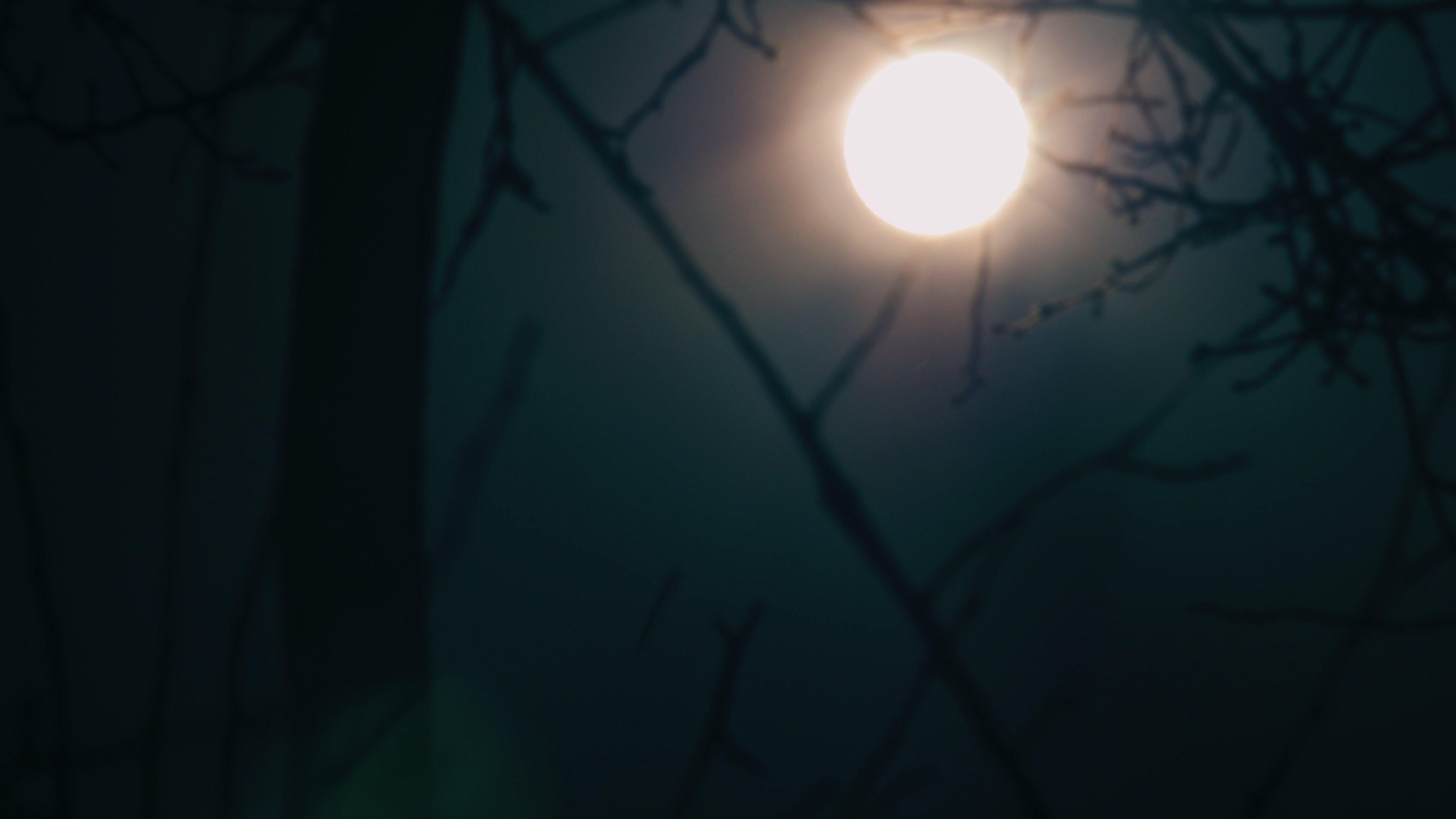 Free stock photo of nightsky