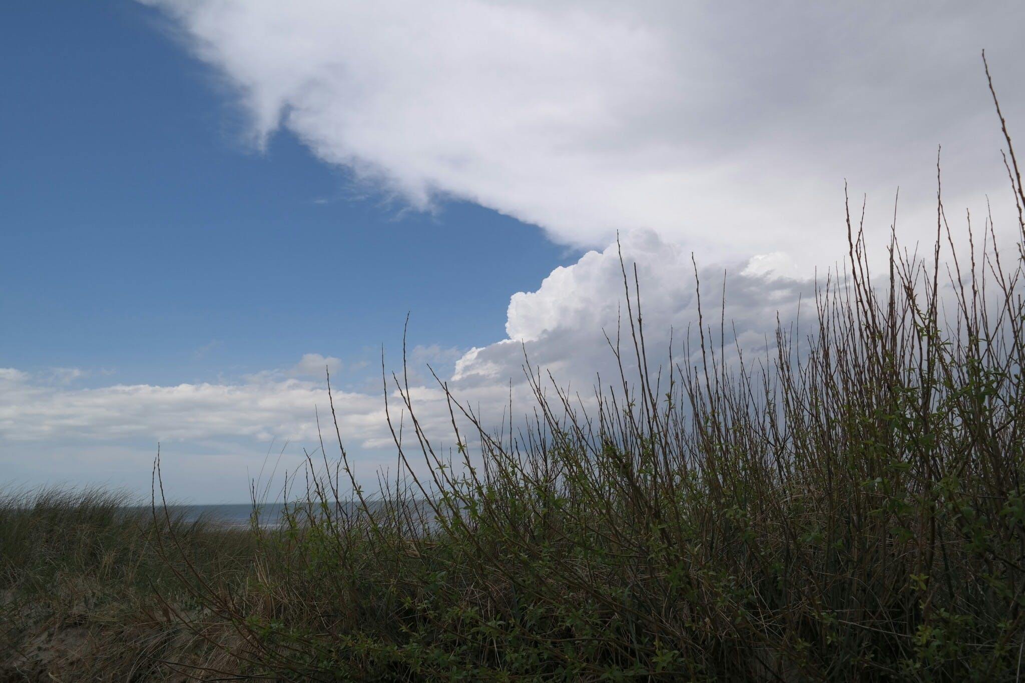 Free stock photo of dune, cloudy sky