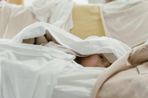 Imagine de stoc gratuită din acoperit, comod, confortabil