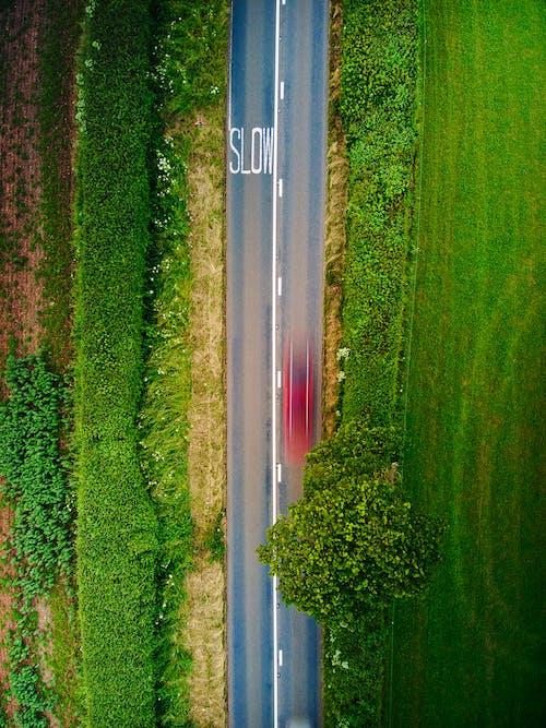 Ingyenes stockfotó drónfelvétel, felülről, fű témában