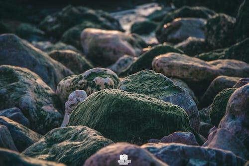 バルト海, 岩盤の無料の写真素材