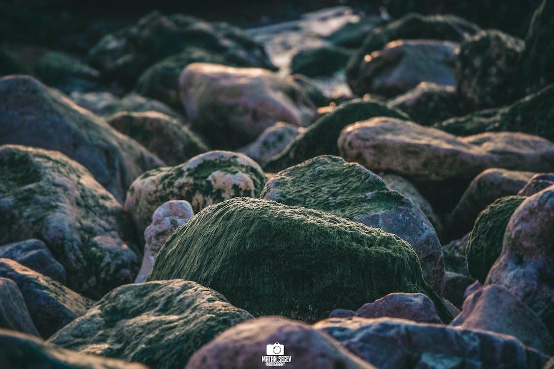 mar Báltico, suelo de piedra
