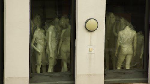 Free stock photo of doll, people, windows