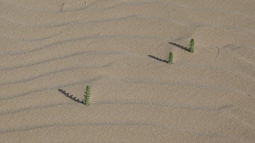 Free stock photo of sand