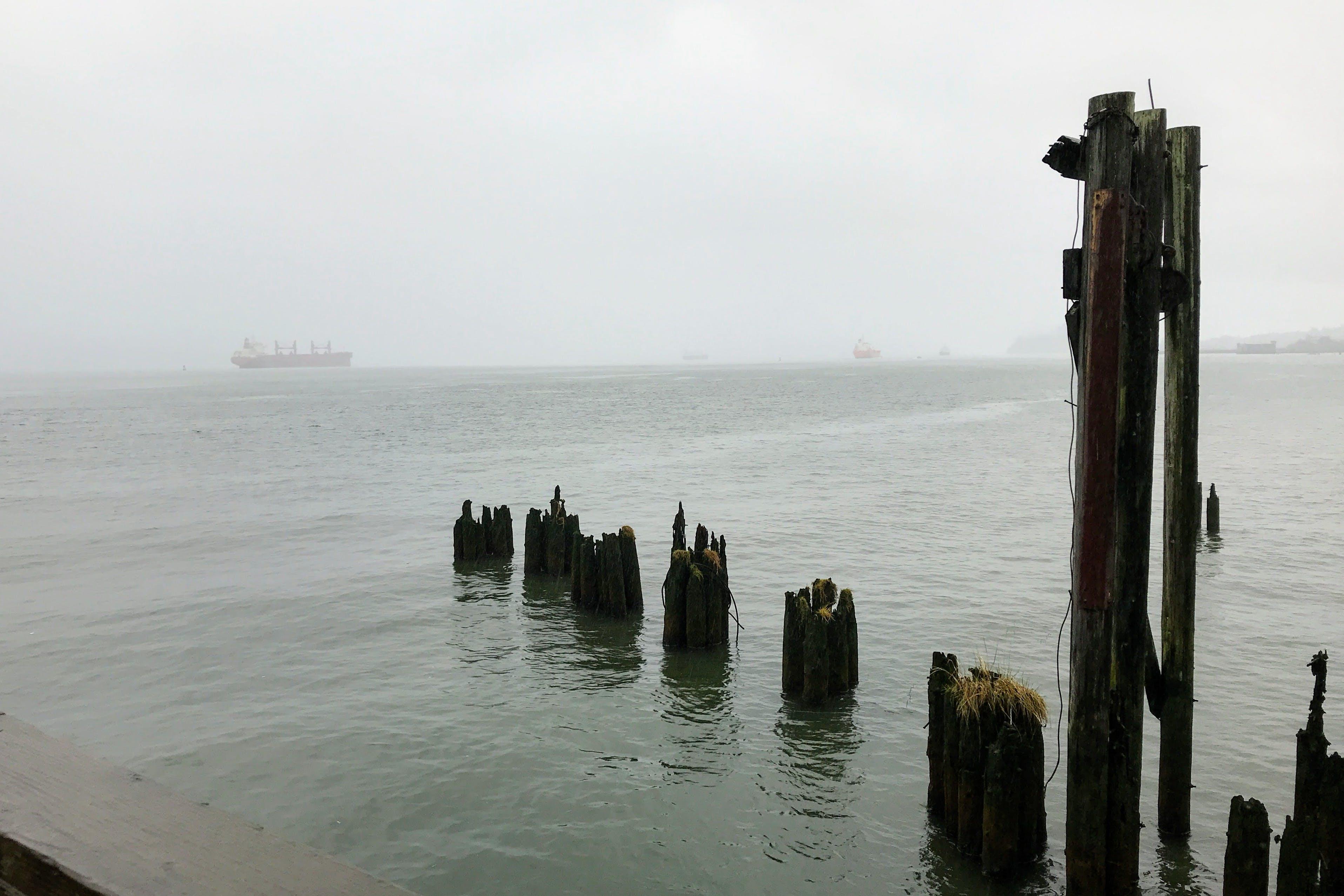 Free stock photo of boat, fog, ocean