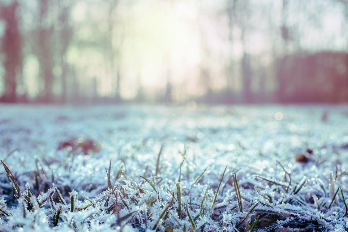 flunssa, huurteinen, jää