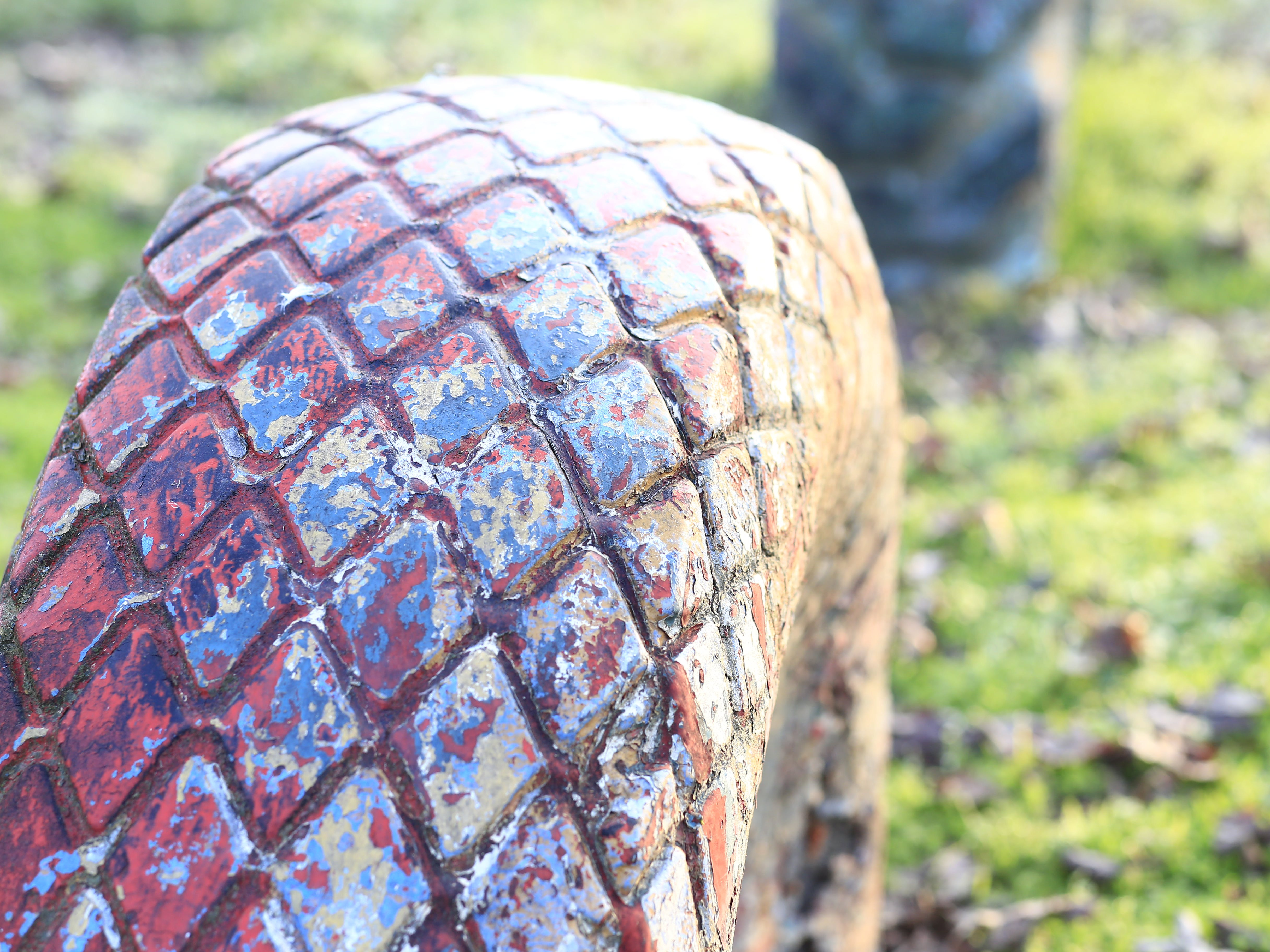 Free stock photo of animal park, old tire, tire