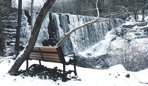 Základová fotografie zdarma na téma chladný, fotografie přírody, krajina, lavička vparku