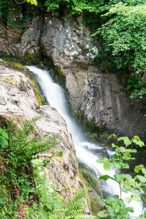 Water Falls Between Gray Rocky Mountain