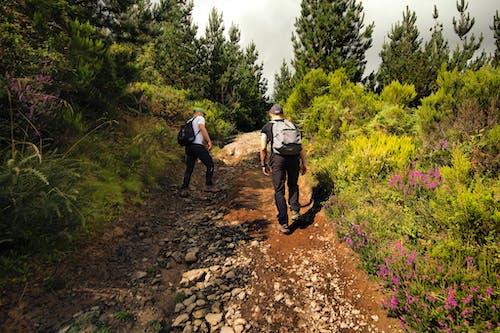 Men Walking on Dirt Road