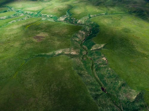Aerial View of Green and Brown Land