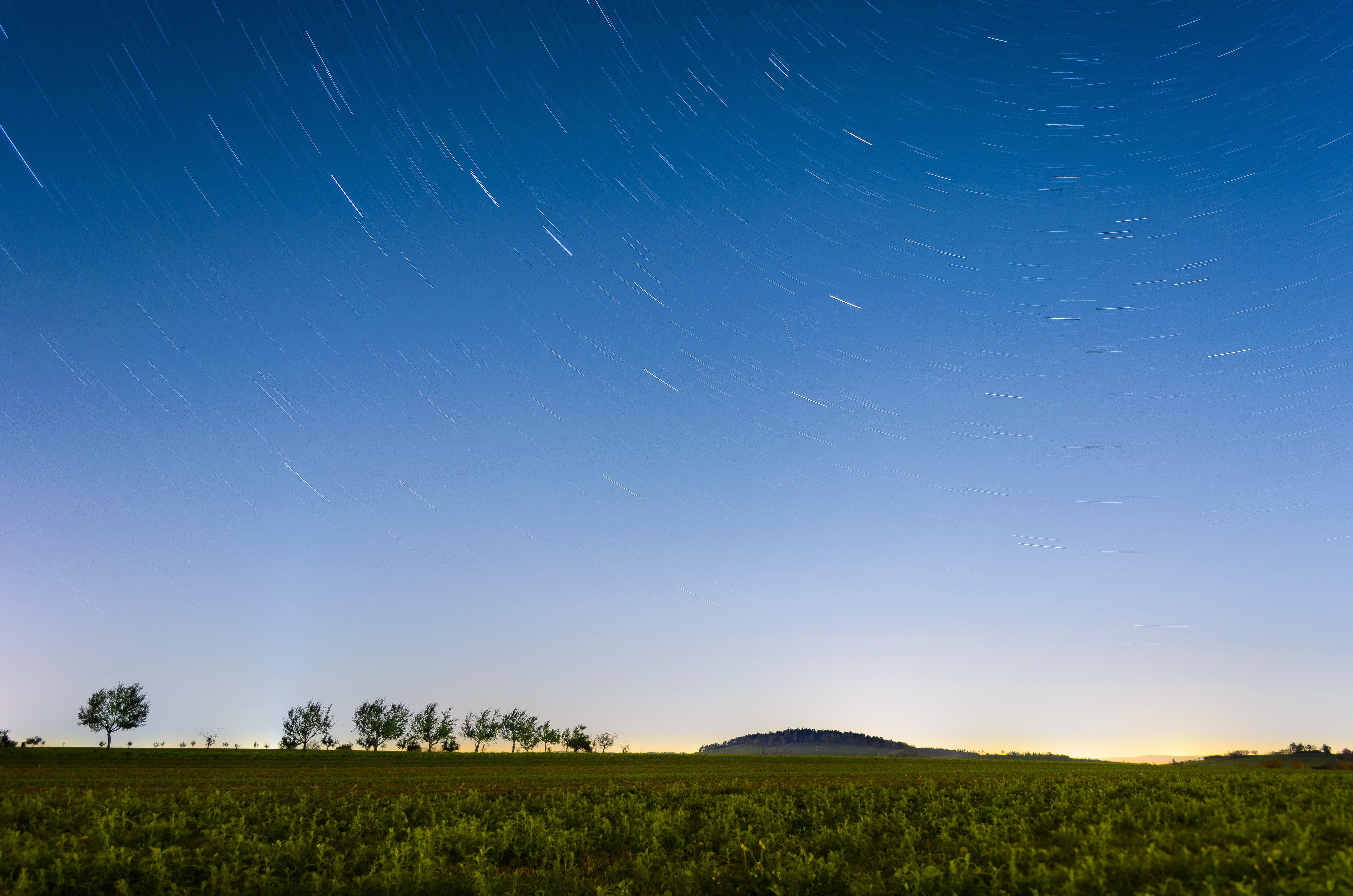 Time-lapse Photography of Field With Trees and Grasses