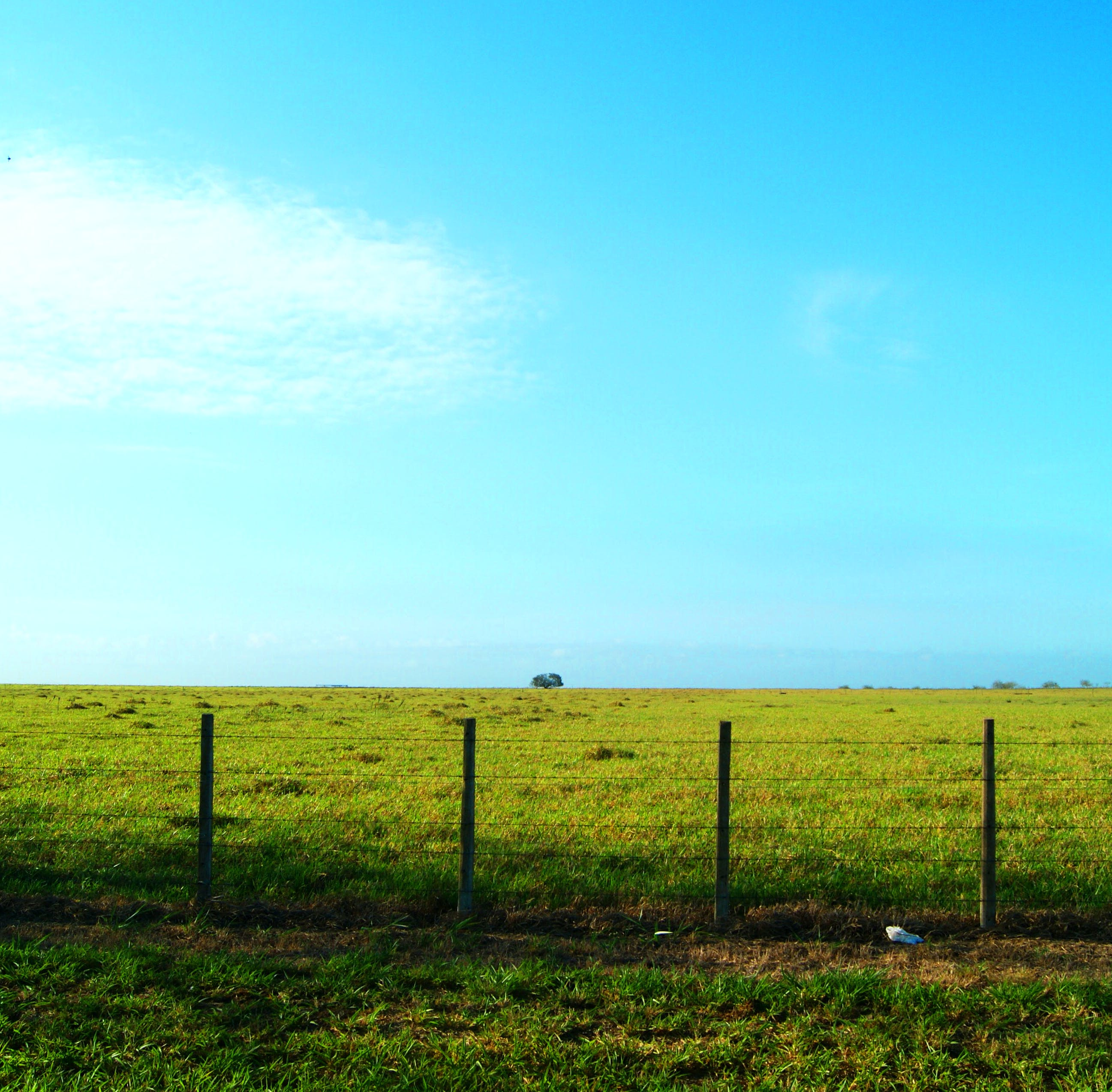 Greenfield Behind Blue Sky