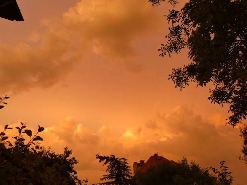 Free stock photo of yellow clouds, yellow sunset, yellowish cloudy sunset