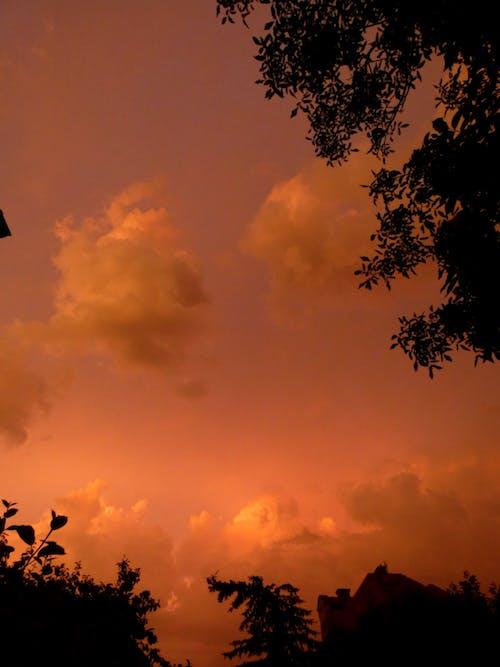 Free stock photo of orange clouds, orange sunset