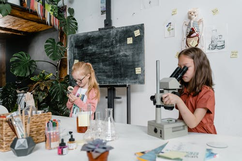 Students Doing a Science Experiment Inside the Laboratory