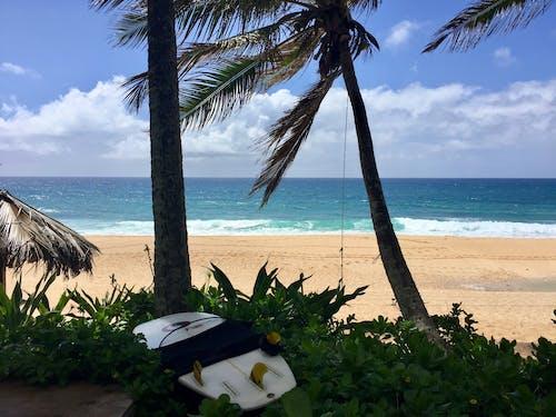 Free stock photo of beach, beach life, beautiful, blue sky