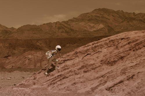 Základová fotografie zdarma na téma astronaut, chůze, cosplay