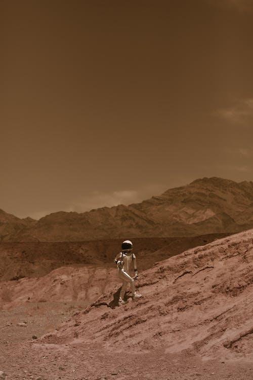 冒險, 勘探, 地面 的 免費圖庫相片