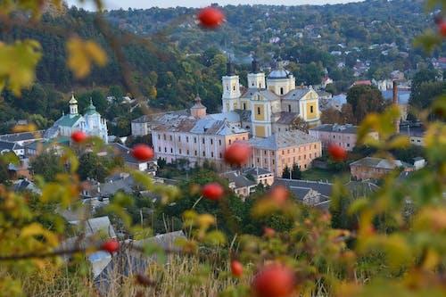 Foto d'estoc gratuïta de arbres, ciutat, Església, muntanya