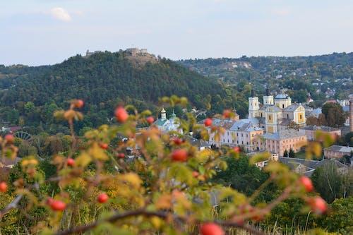 Foto d'estoc gratuïta de arbres, bona, castell, ciutat