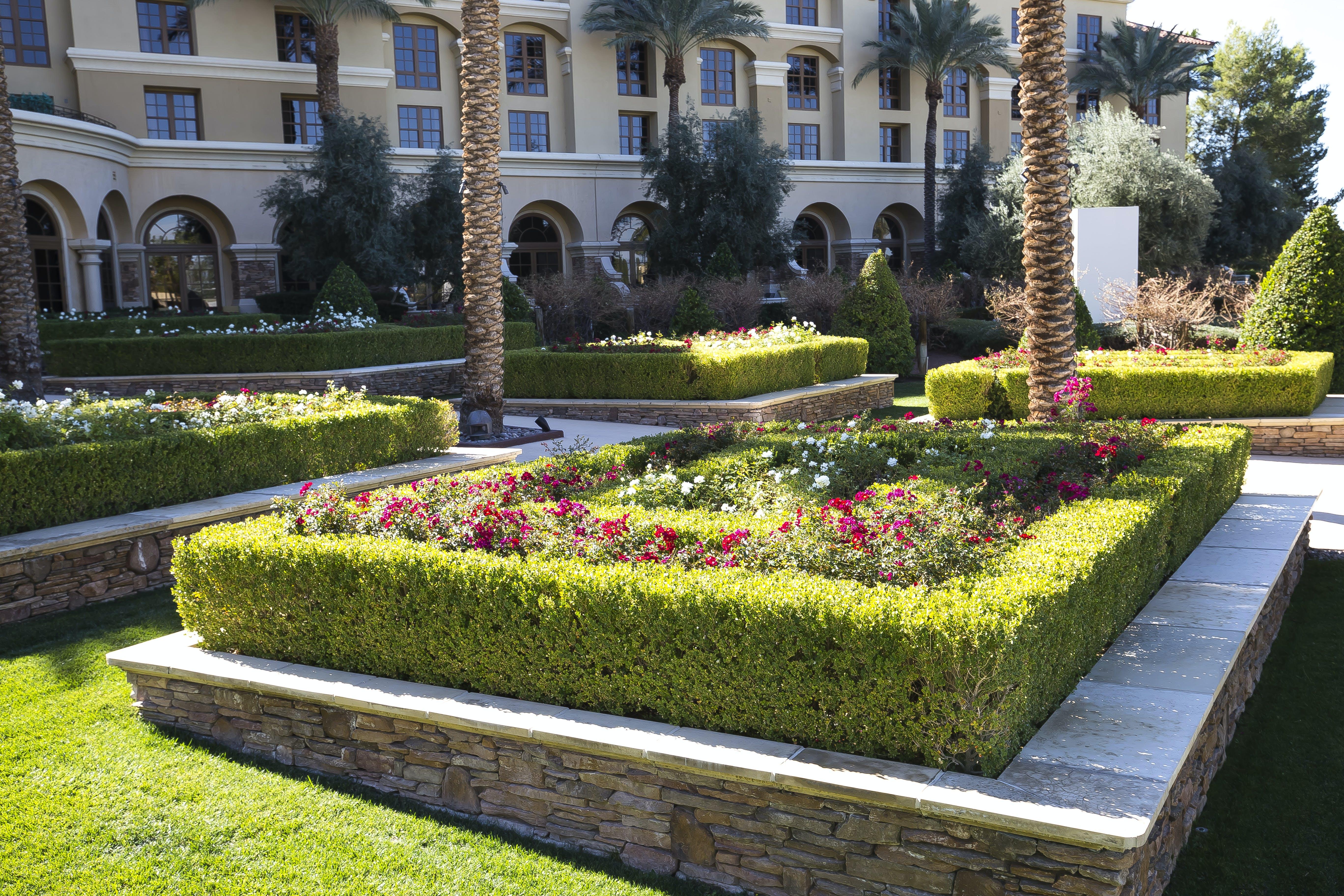Free stock photo of Green valley ranch resort, hotel, hotel resort, resort