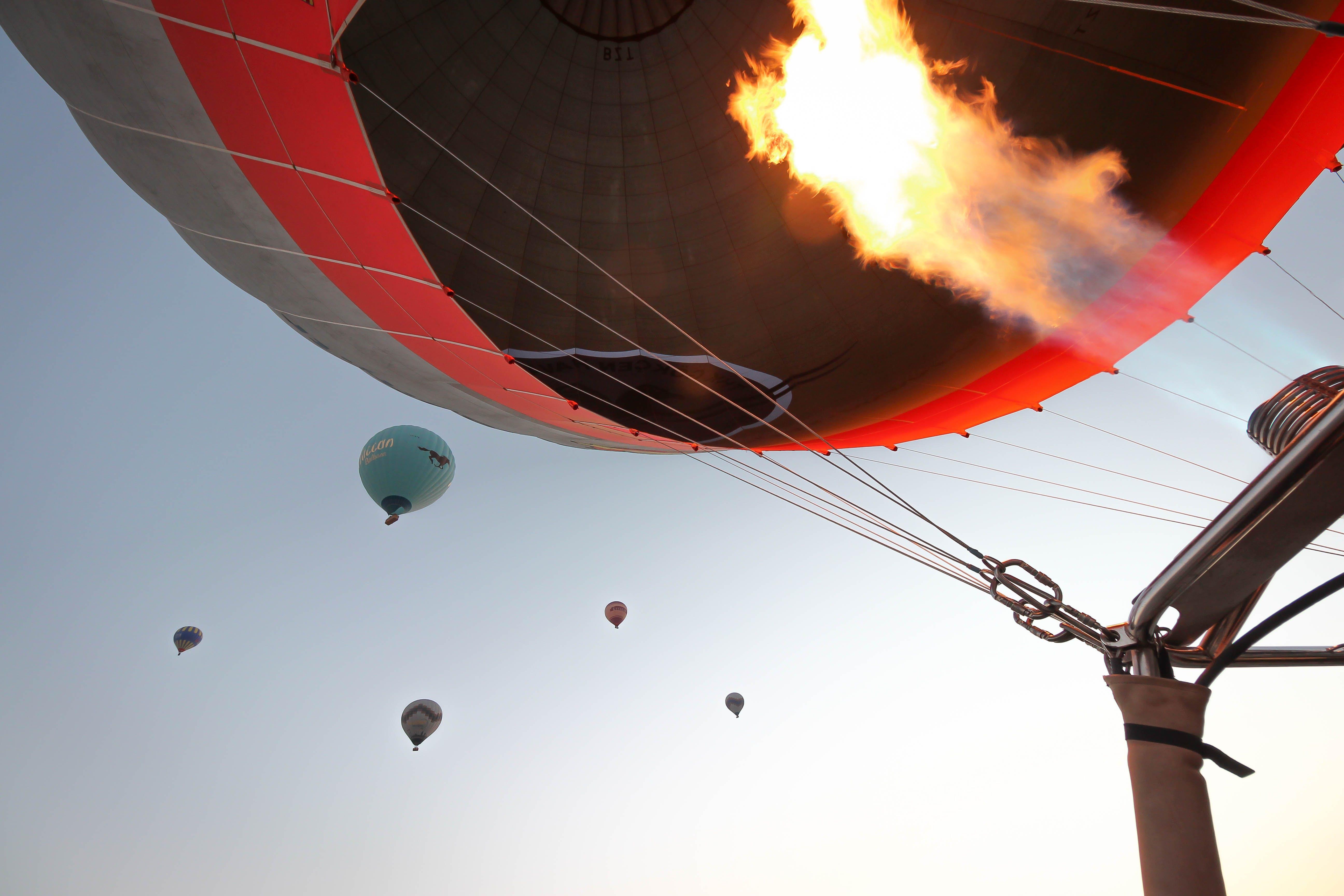 Free stock photo of adventure, air travel, baloon, blue sky