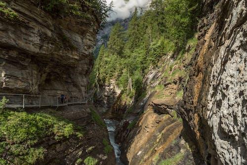 Darmowe zdjęcie z galerii z drewno, góra, jaskinia