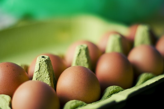 Free stock photo of food, eggs