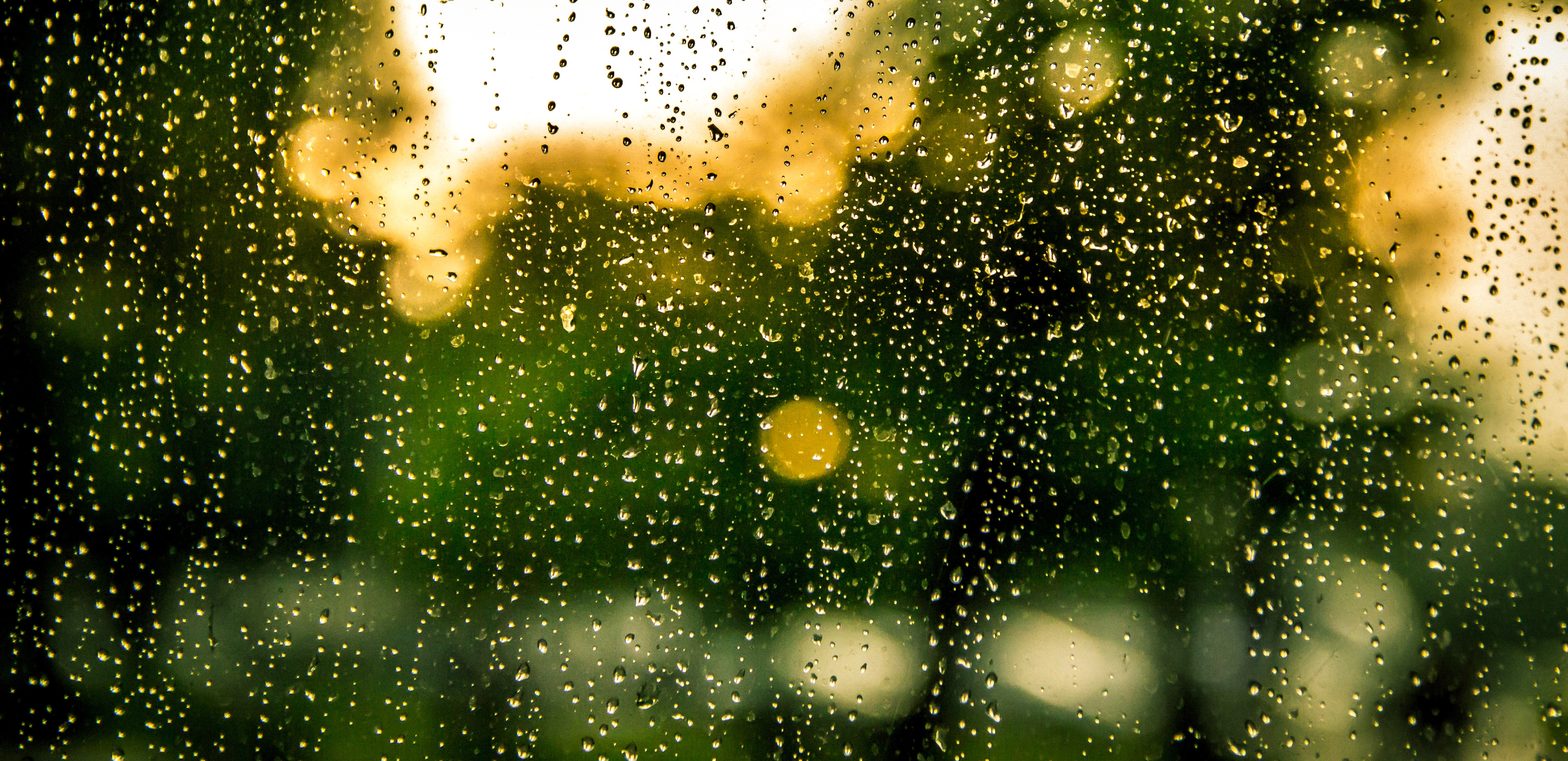 water dew in clear glass panel free stock photo