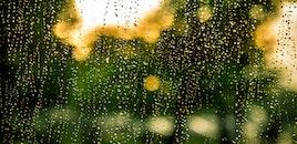water, rain, raindrops