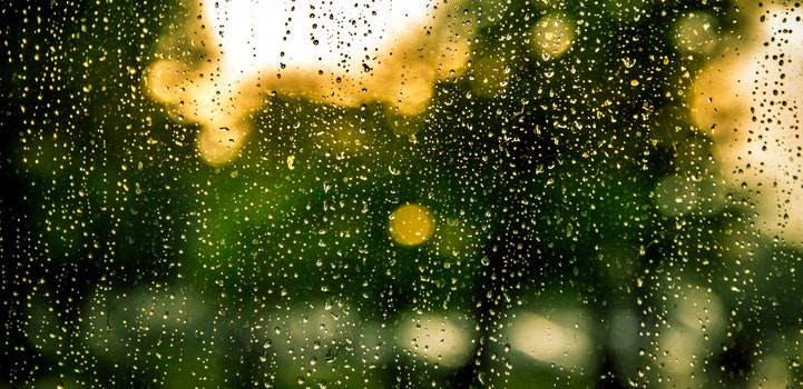 Free stock photo of water, rain, raindrops, window