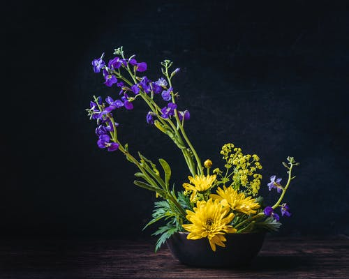 Still Life Photo of Purple and Yellow Flowers on Black Vase