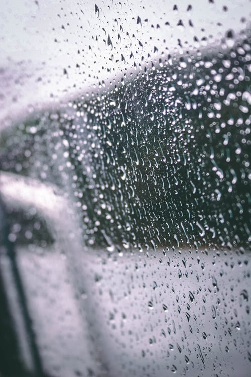 Foto stok gratis air, hujan, tetes air