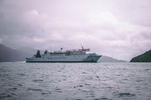 Foto stok gratis feri, kapal, kapal feri, laut
