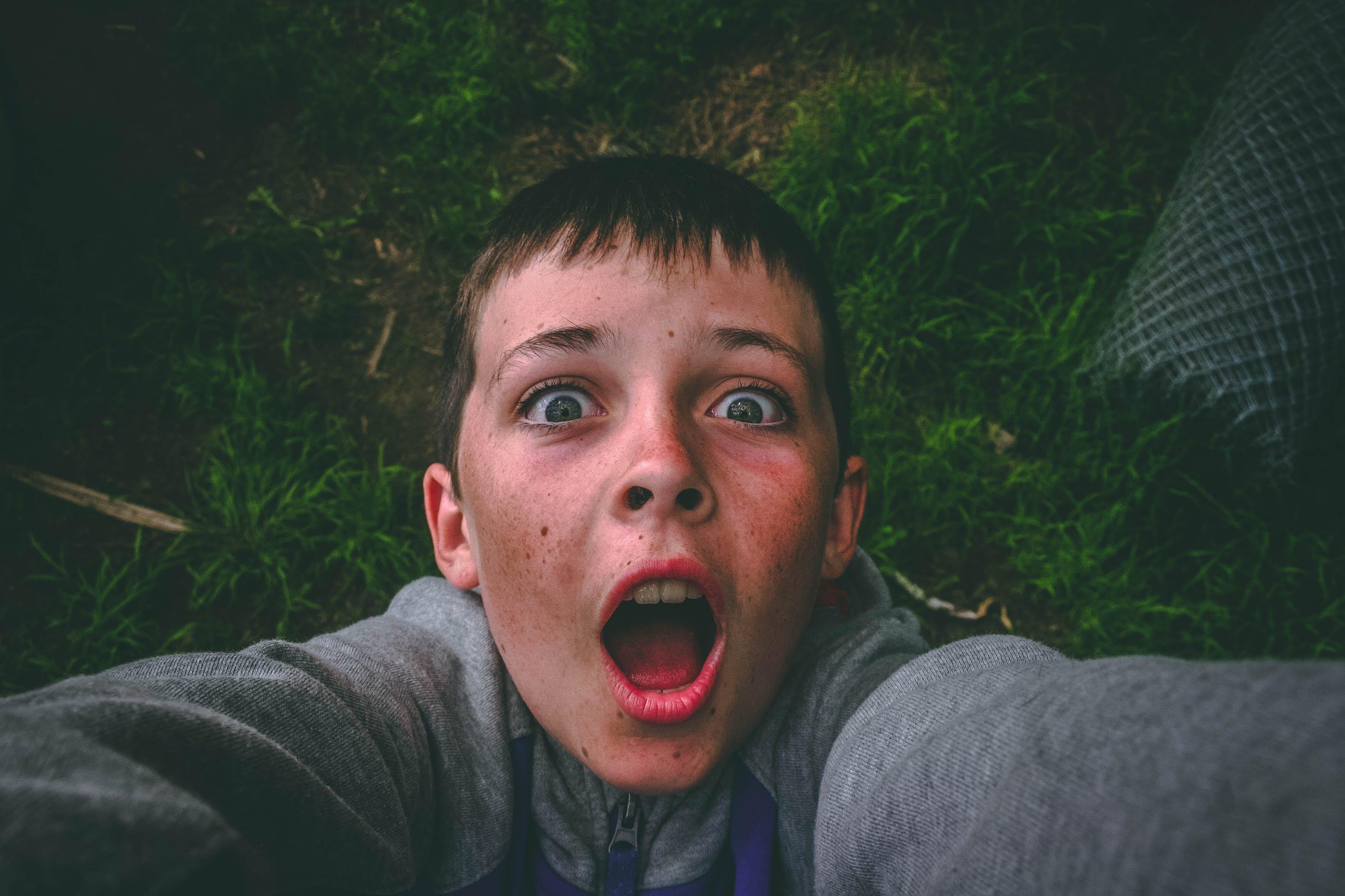Gratis lagerfoto af ansigtsudtryk, barn, Dreng, græs