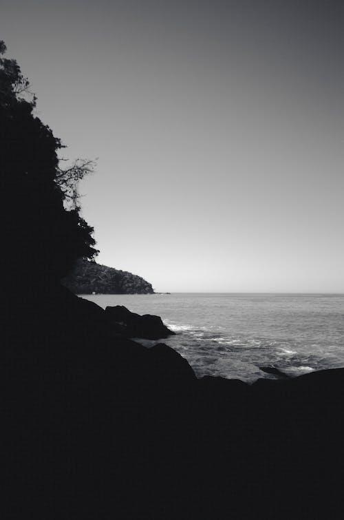 Gratis lagerfoto af brasilien, hav, hvid og sort