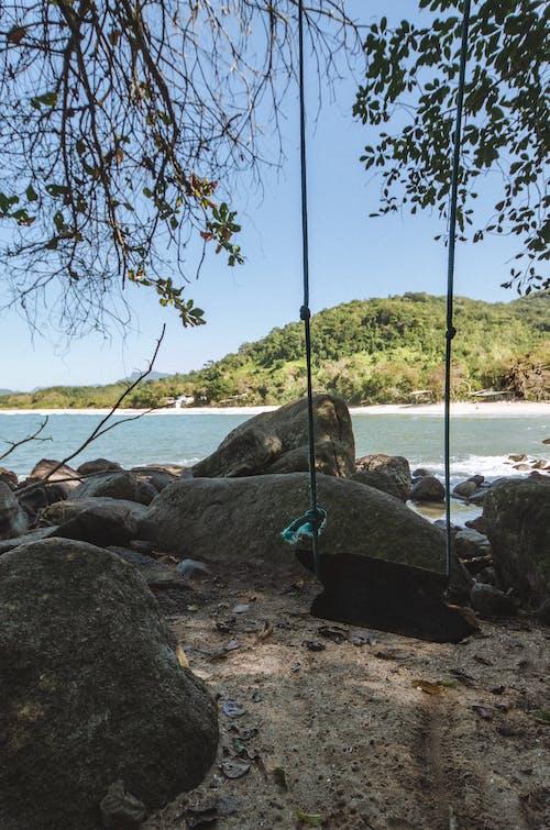 Gratis lagerfoto af brasilien, gynge, hav