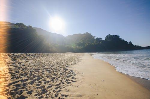 Gratis lagerfoto af affald, brasilien, hav