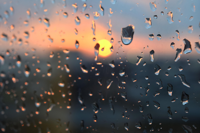 free stock photo of drops rain sunset