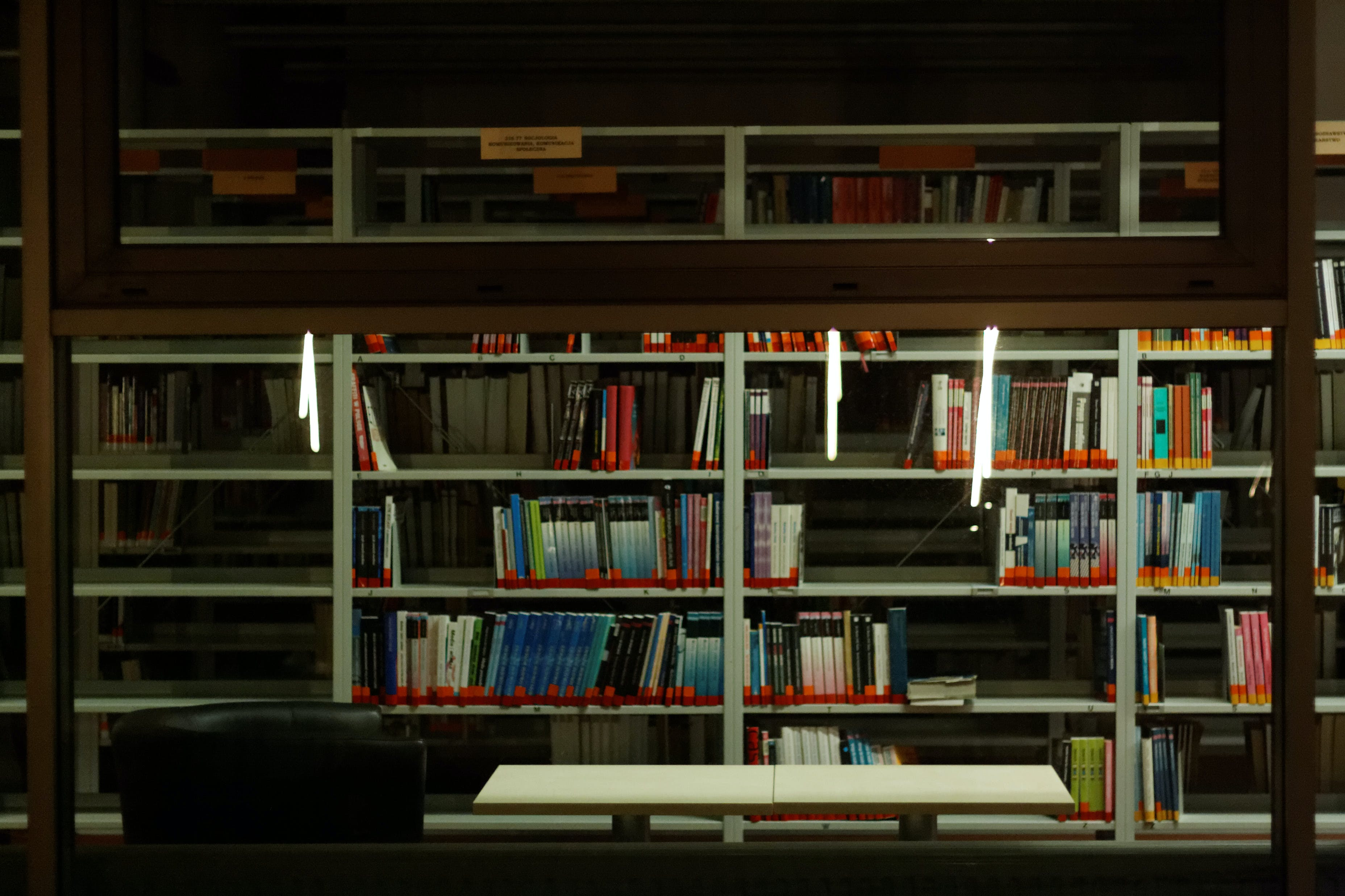Free stock photo of library, school