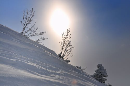 Ingyenes stockfotó téli táj témában