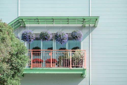 Imagine de stoc gratuită din arhitectură, balcon, cămin